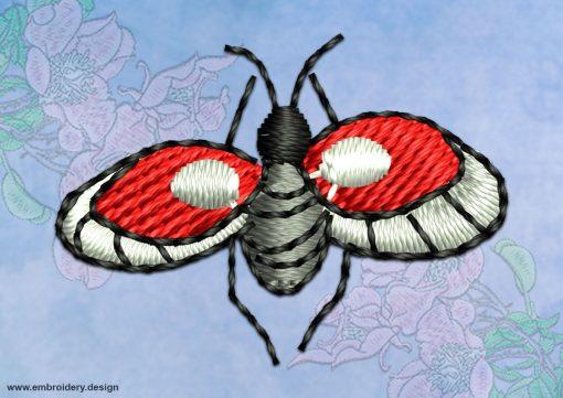 This Ladybug