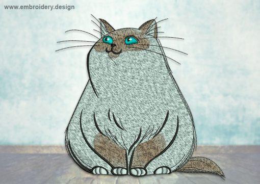 This Plump cat