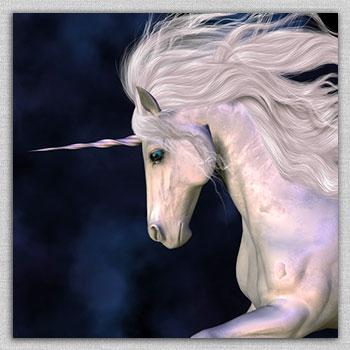 Horses, Unicorns, Pegasus